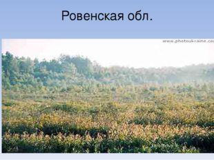 Ровенская обл.