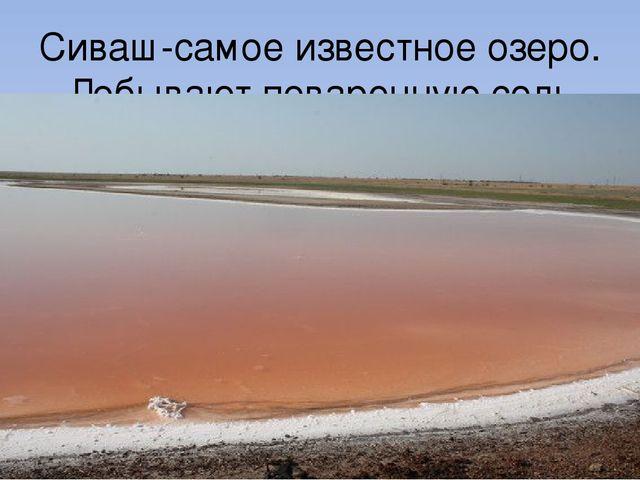 Сиваш-самое известное озеро. Добывают поваренную соль