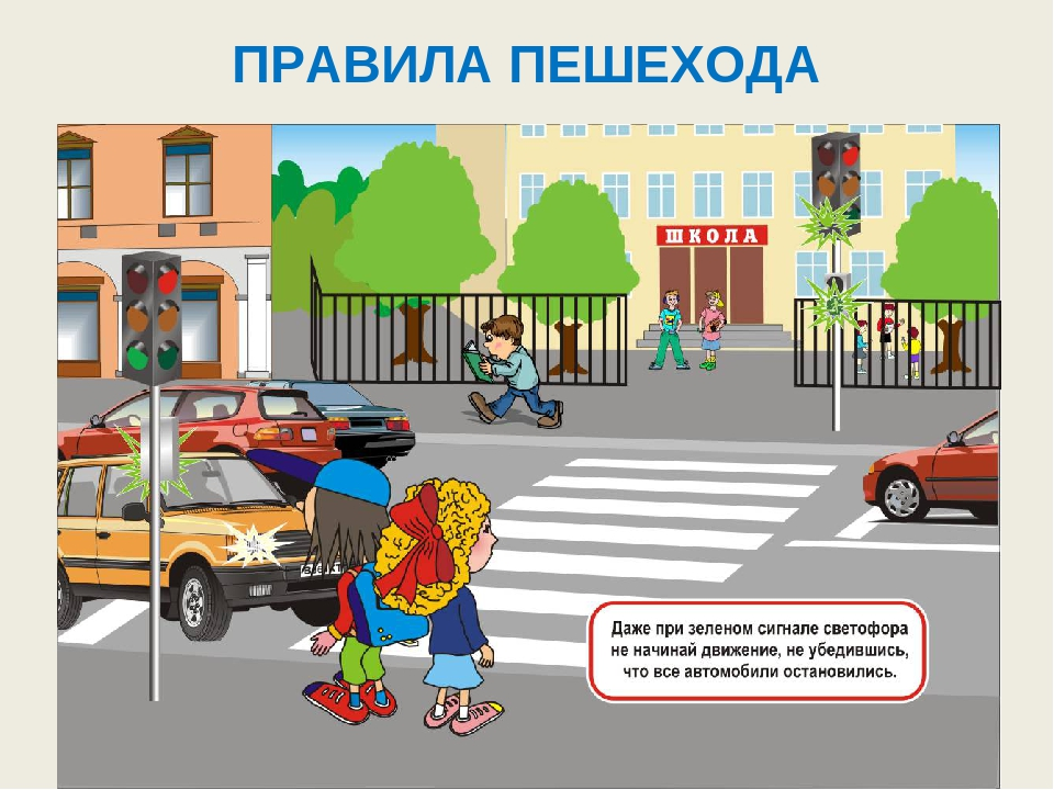 правила дорожного движения для спецтранспорта центр Коралл, Мостовской