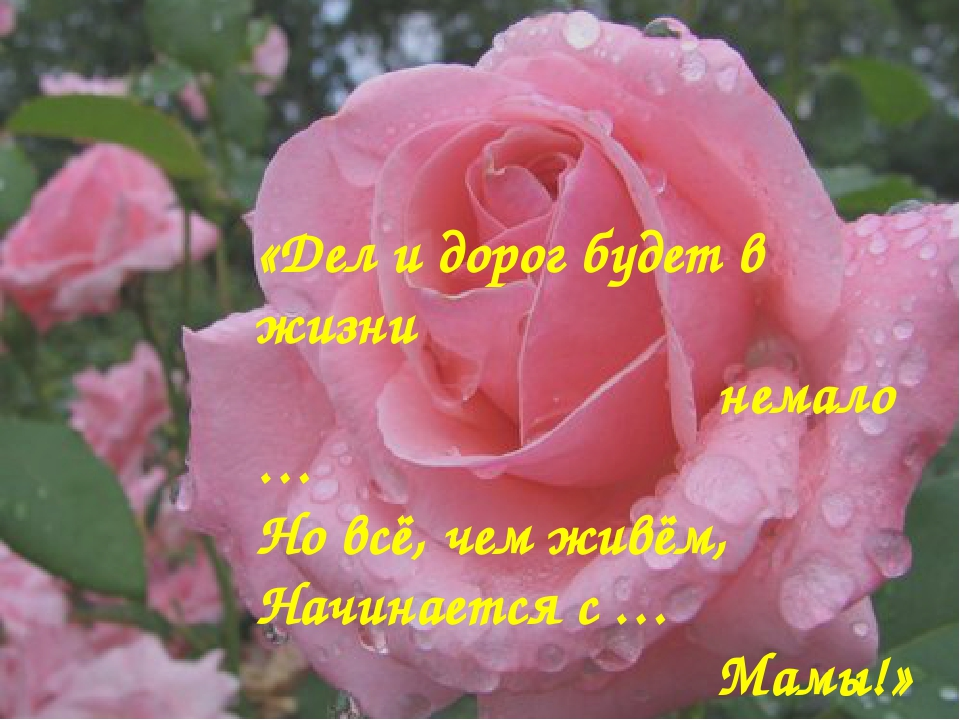 «Дел и дорог будет в жизни немало … Но всё, чем живём, Начинается с … Мамы!»