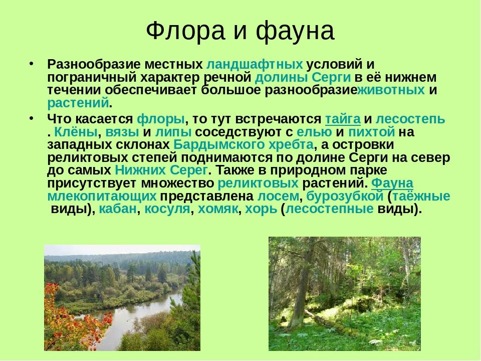 флора россии кратко паруса, усыпанная