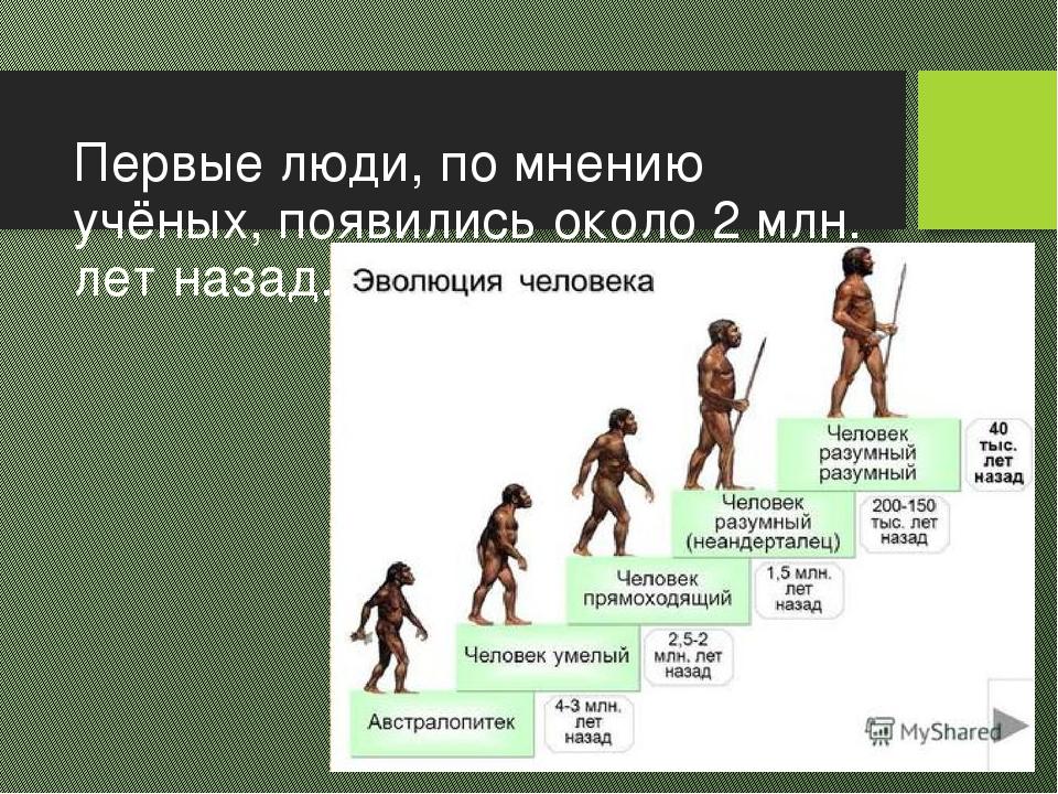 картинки этапов эволюции человека что поделать