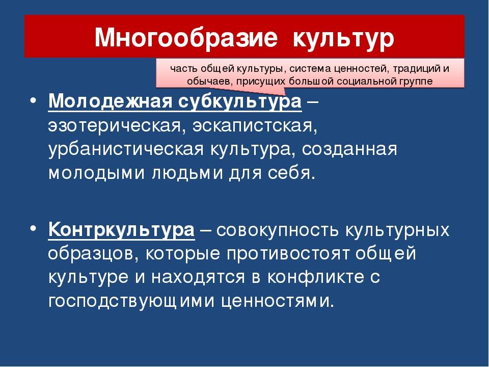 Многообразие культур Молодежная субкультура – эзотерическая, эскапистская, ур...