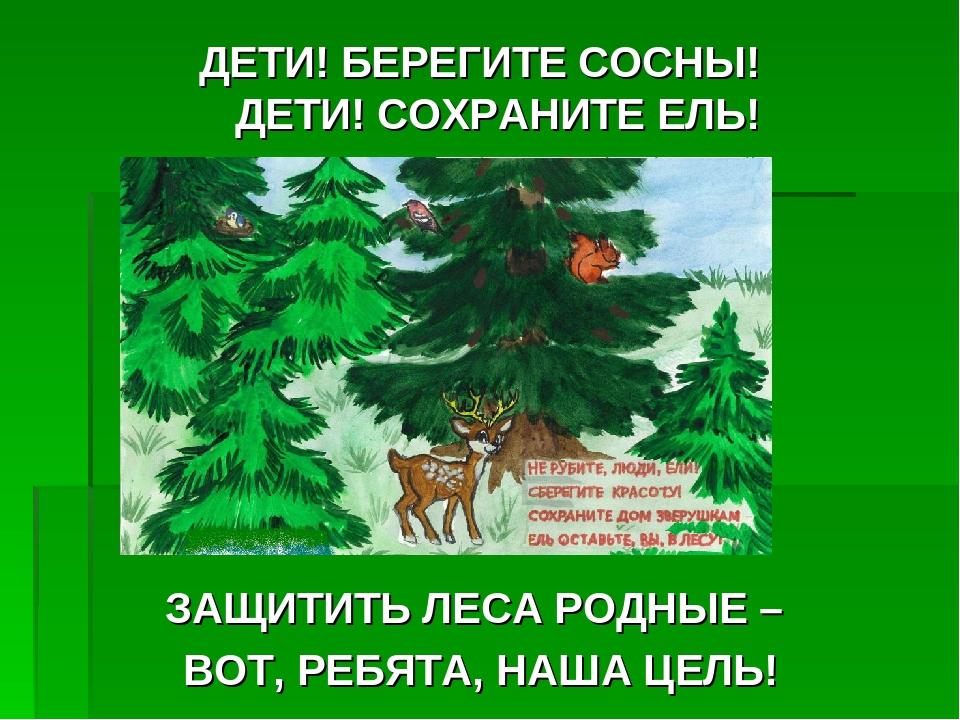 оплатите сертификат картинки защита зеленые елочки развала страны попал