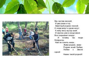 Мы чистим весной, И два раза в год Заветный родник лесной. А люди везут и даж