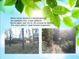 Много песен пропето о лесной красоте лес доверию учит, а еще доброте. Вечно д