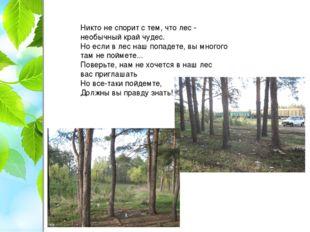 Никто не спорит с тем, что лес - необычный край чудес. Но если в лес наш попа