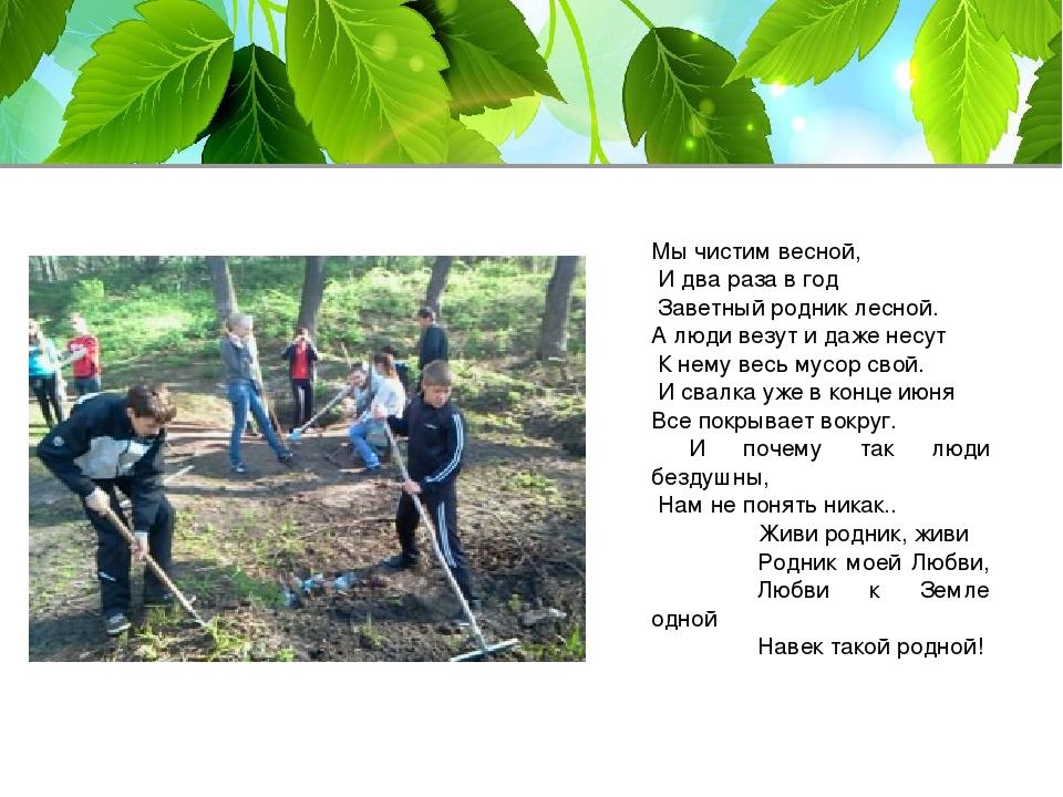 Мы чистим весной, И два раза в год Заветный родник лесной. А люди везут и даж...