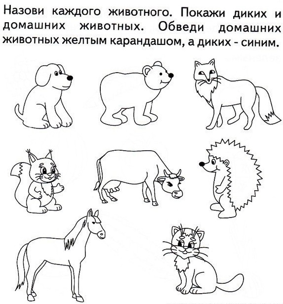 первый картинки задания детям по теме домашние животные гламурные