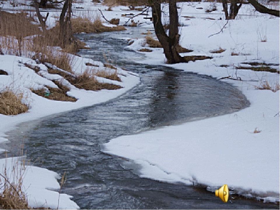 открытки бегут ручьи настойку