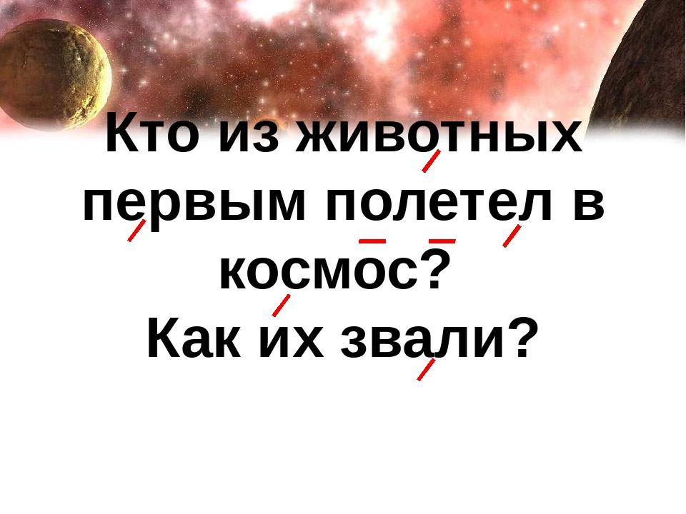 Кто из животных первым полетел в космос? Как их звали?