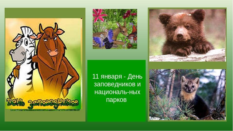 Всемирный день заповедников и национальных парков символ рисунок