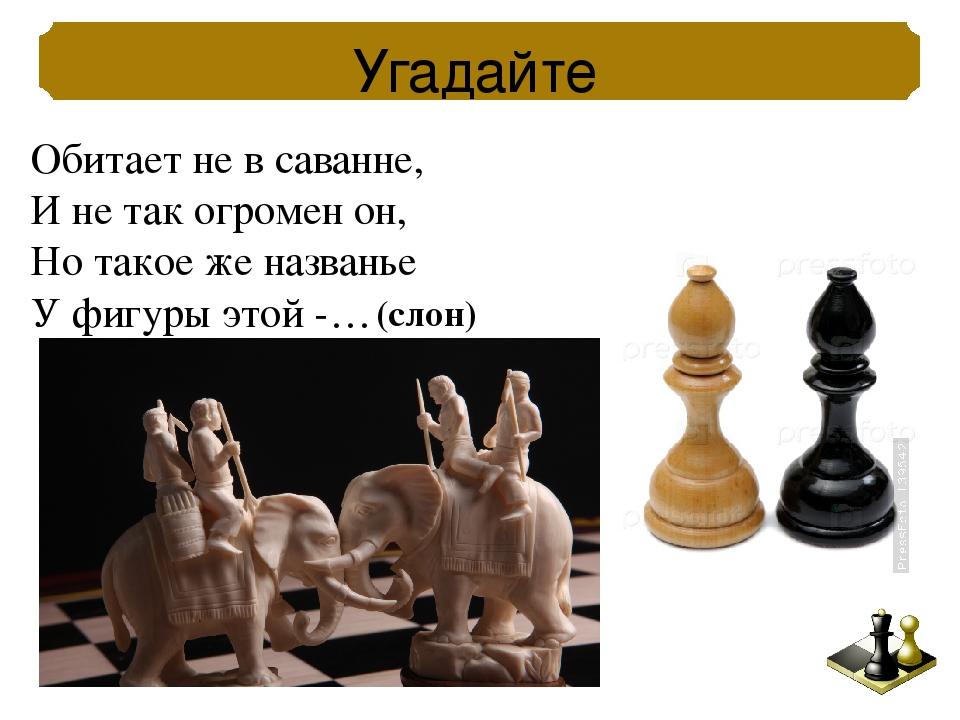 Название шахматных фигур картинка