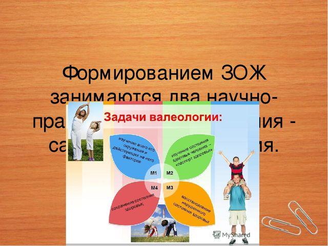 Формированием ЗОЖ занимаются два научно-практических направления -  санология. 58f6c4bf7f5