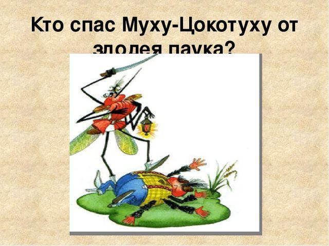 Кто спас Муху-Цокотуху от злодея паука?