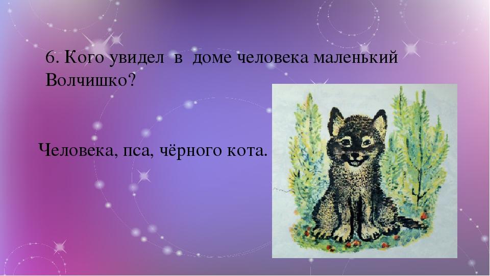 Рассказы чарушина с картинками волчишко