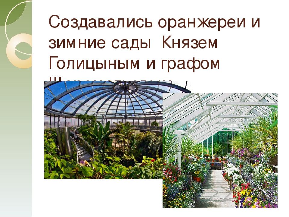 Создавались оранжереи и зимние сады Князем Голицыным и графом Шереметьевым