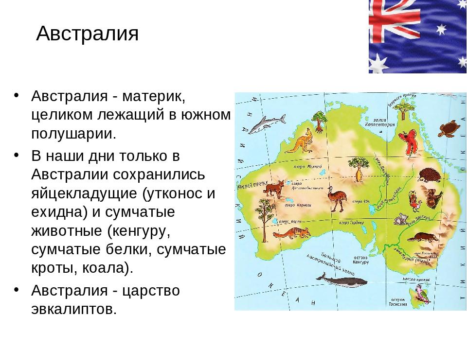 Реферат об австралии с картинками