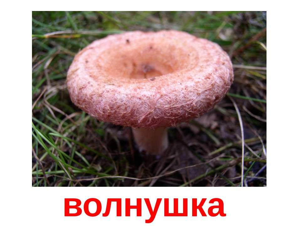 hello_html_56efdb87.jpg