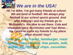 We are in the USA! Hi! I'm Mike. I've got many friends at school. We are fond
