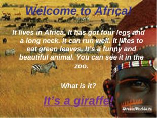 Welcome to Africa! It lives in Africa. It has got four legs and a long neck.