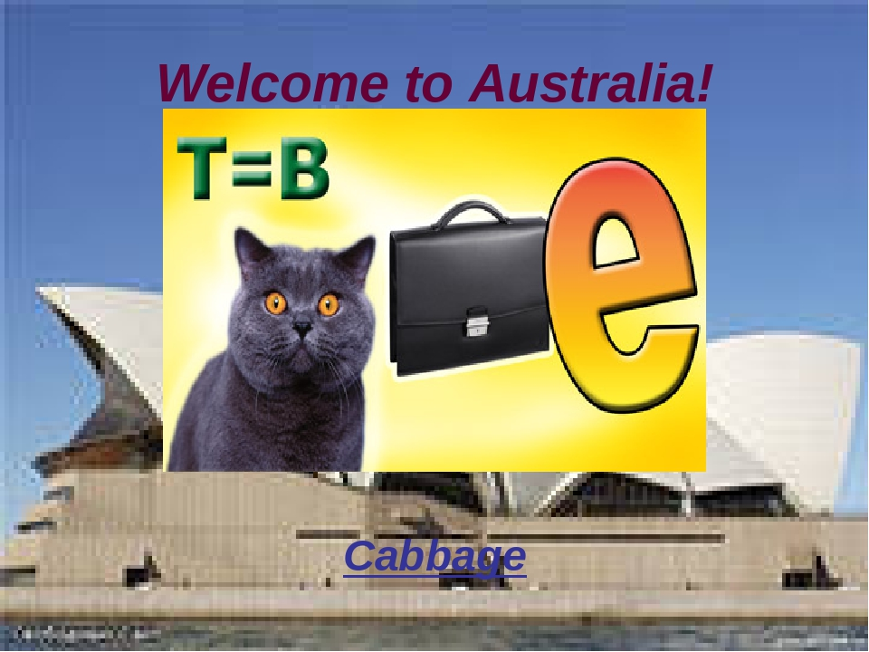 Welcome to Australia! Cabbage