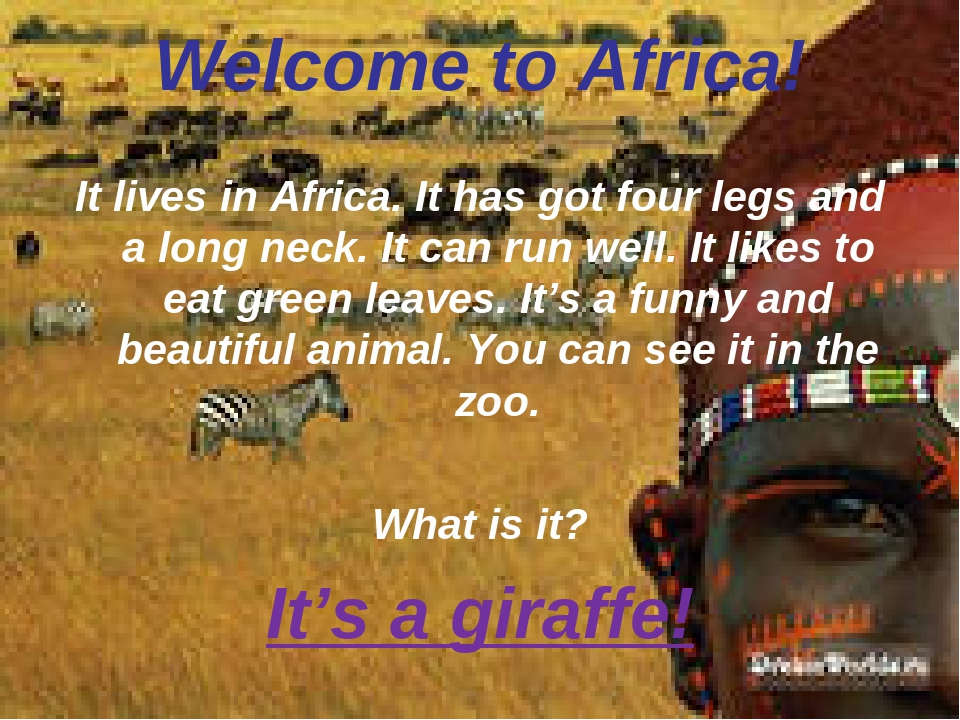Welcome to Africa! It lives in Africa. It has got four legs and a long neck....