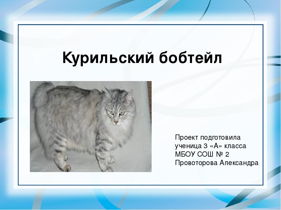 Курильский бобтейл Проект подготовила ученица 3 «А» класса МБОУ СОШ № 2 Прово...
