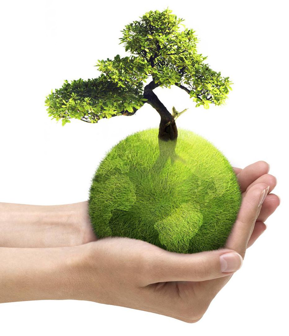 отличие предыдущих картинки зеленой планеты земля результате