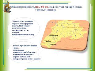Общая протяженность Цны 445 км. На реке стоят города Котовск, Тамбов, Моршанс