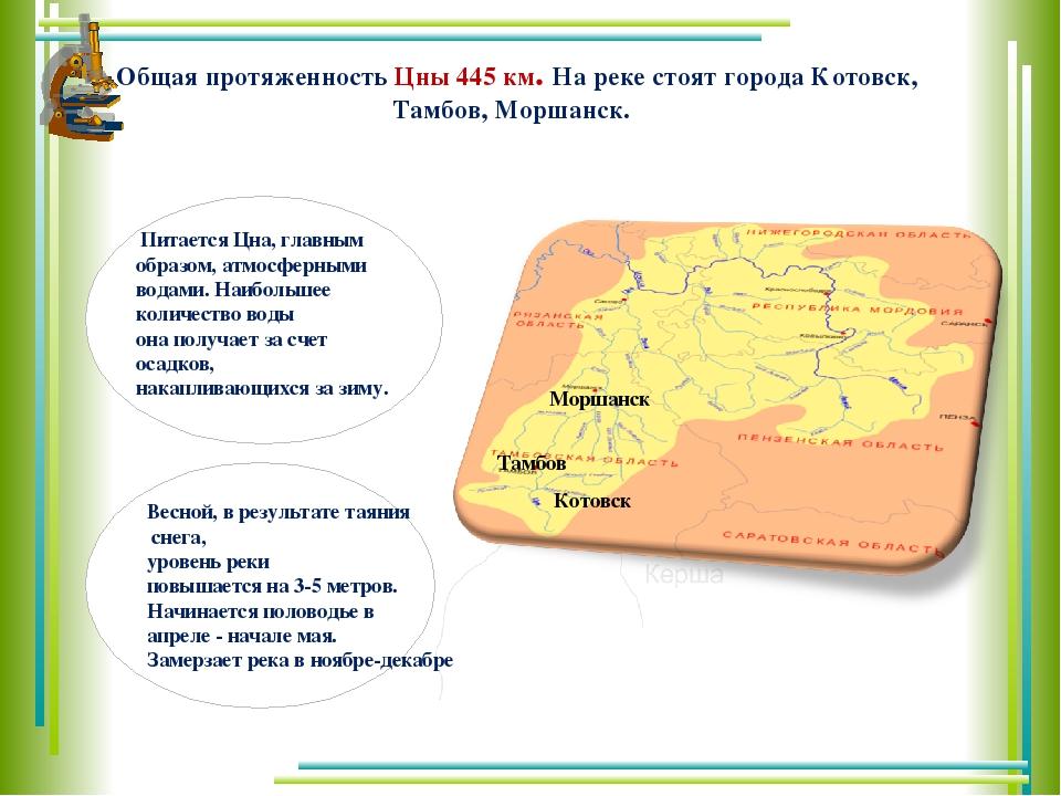 Общая протяженность Цны 445 км. На реке стоят города Котовск, Тамбов, Моршанс...