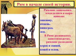 Рим в начале своей истории. Римляне занимались земледелием и выра-щивали: пше