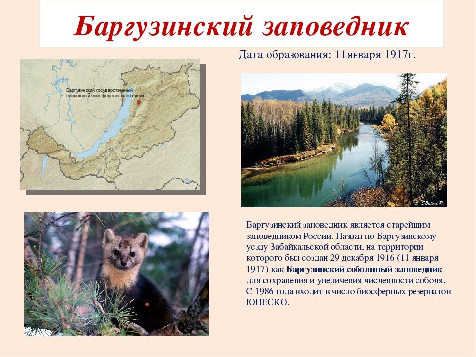 Картинки по запросу 1917 - На территории России создан первый заповедник – Баргузинский.