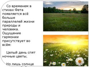 Со временем в стихах Фета появляется всё больше параллелей жизни природы и