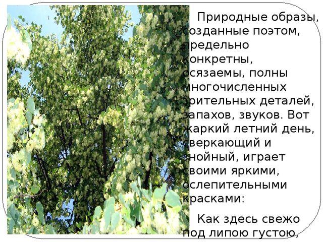 Природные образы, созданные поэтом, предельно конкретны, осязаемы, полны мно...