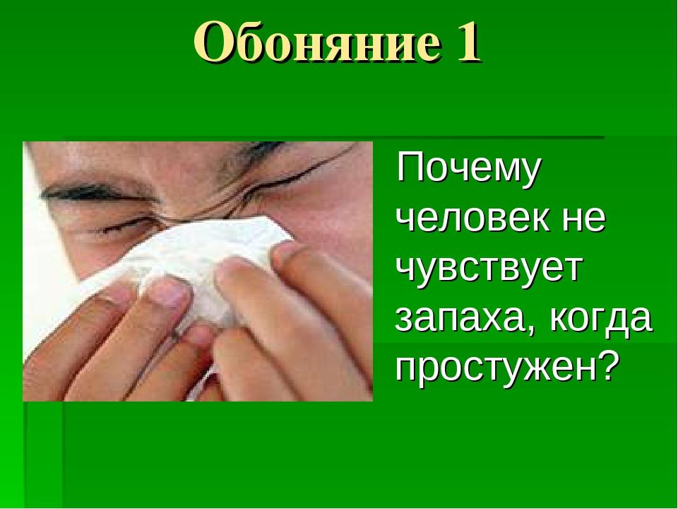 Почему Человек Не Путает Запахи