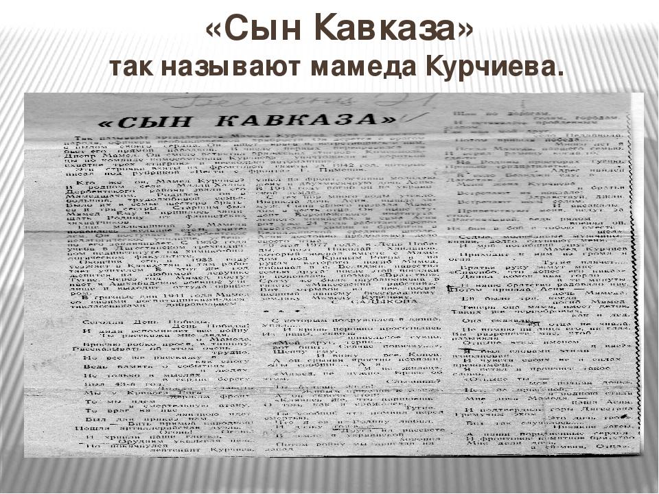«Сын Кавказа» так называют мамеда Курчиева.