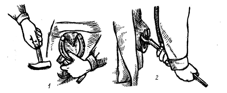 Реферат ортопедия болезни скакательного сустава у крс не ем мясо суставы хрустят