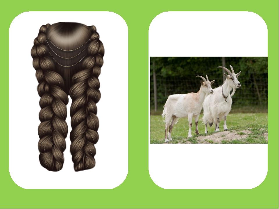 где логопедические картинки коза-коса речь идет хипстерах