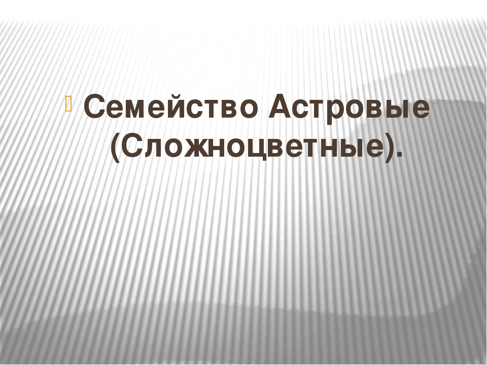 Семейство Астровые (Сложноцветные).