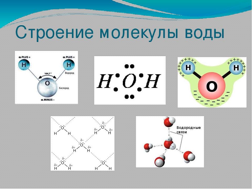 справитесь строение молекулы картинки по химии нём было