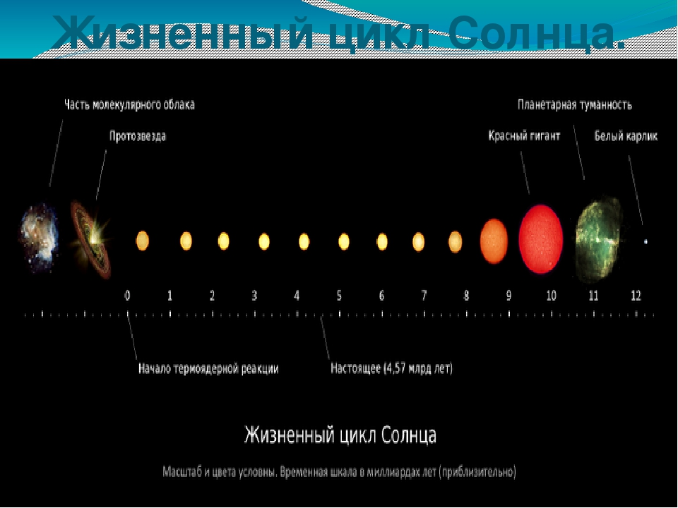 the life cycle of the sun The sun has always been the center of our cosmological systems but with the advent of modern astronomy, humans have become to break it down, the sun is about half way through the most stable part of its life over the course of the past four billion years, during which time planet earth and.