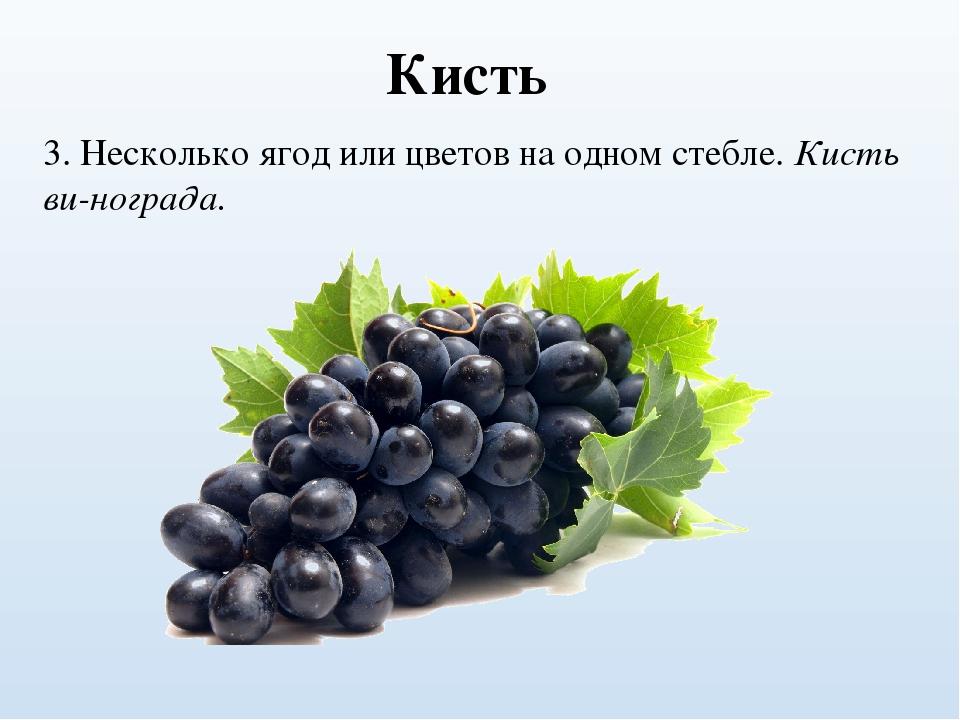 Загадка про виноград с картинкой
