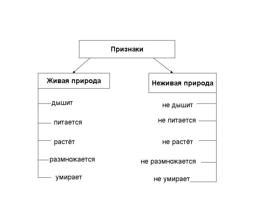 hello_html_30c51ab4.jpg