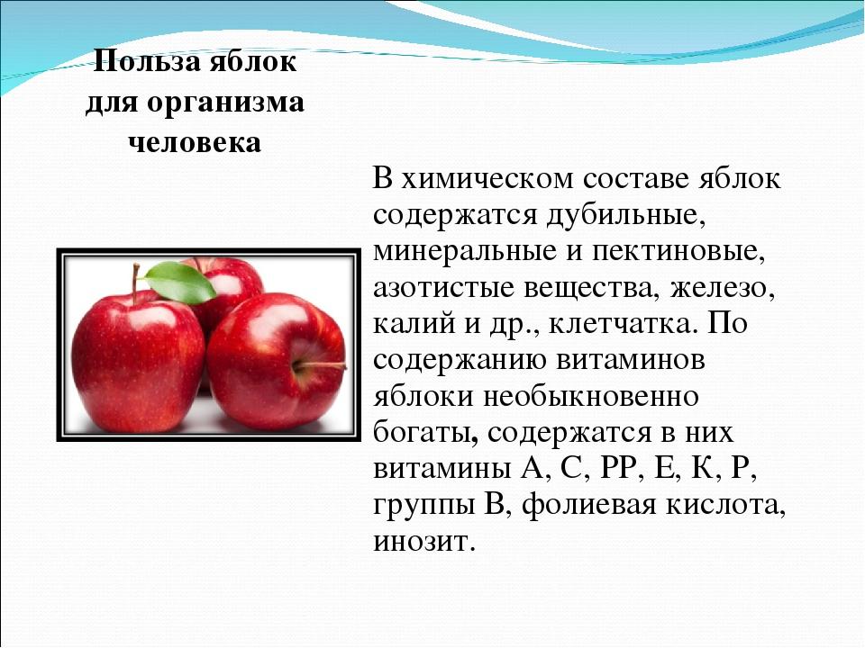 Польза печеных яблок для организма человека