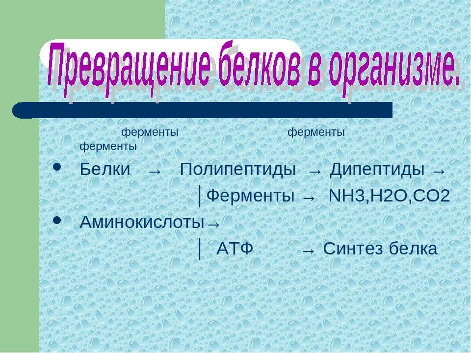 ферменты ферменты ферменты Белки → Полипептиды → Дипептиды → │Ферменты → NH3...