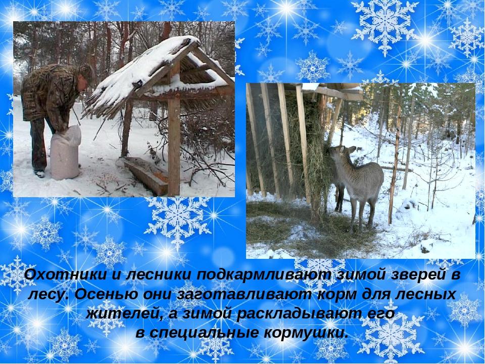 картинки на тему помощь животным зимой показа публикаций, встроенный