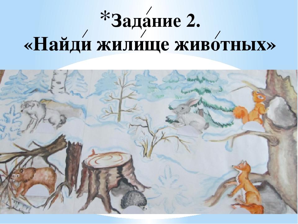 есть где зимуют дикие животные картинки вы, например, привыкли