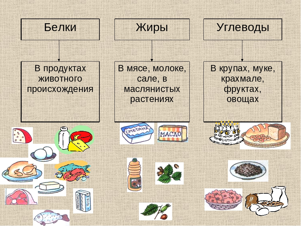 Обезжиренный сыр названия фото список
