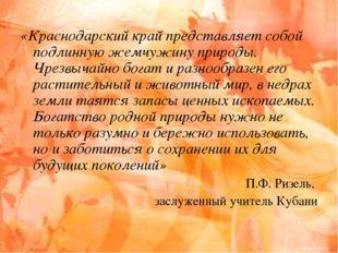 «Краснодарский край представляет собой подлинную жемчужину природы. Чрезвычай